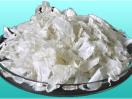 Chitosan Extract