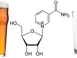 Nicotinamide Riboside