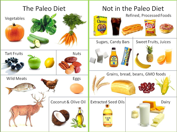 Paleo Diet Meal Plan